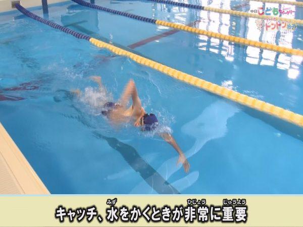 【脱初心者】改めて学びたい、クロールの基本的な泳ぎ方
