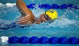 【保存版】水泳でおすすめしたいパドルを目的別にご紹介